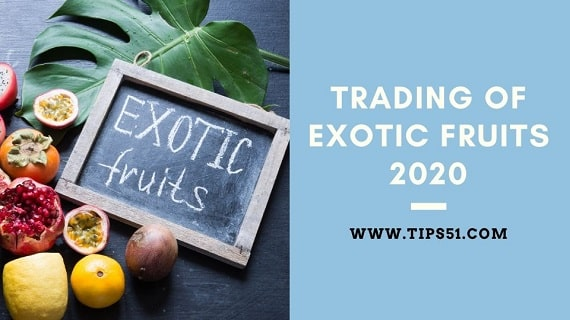 Trading of Exotic Fruits